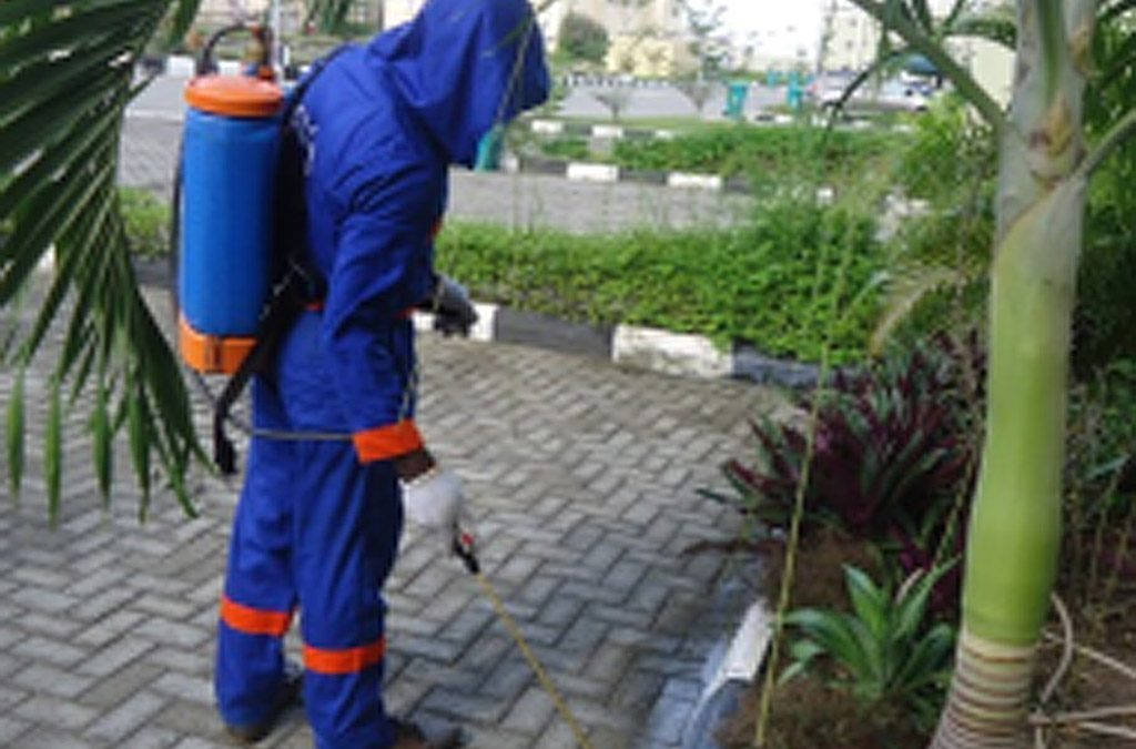 Fumigación. Prevención y control de plagas